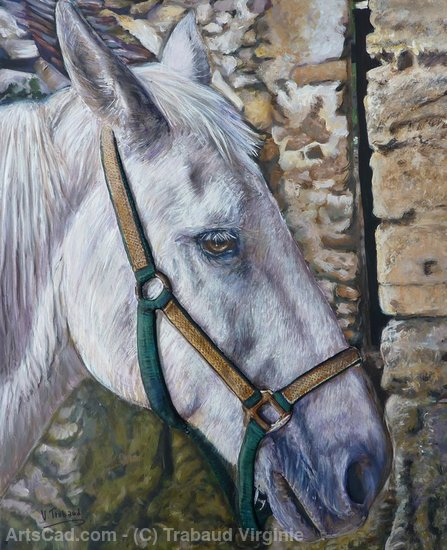 Artwork >> Trabaud Virginie >> portrait of horse white