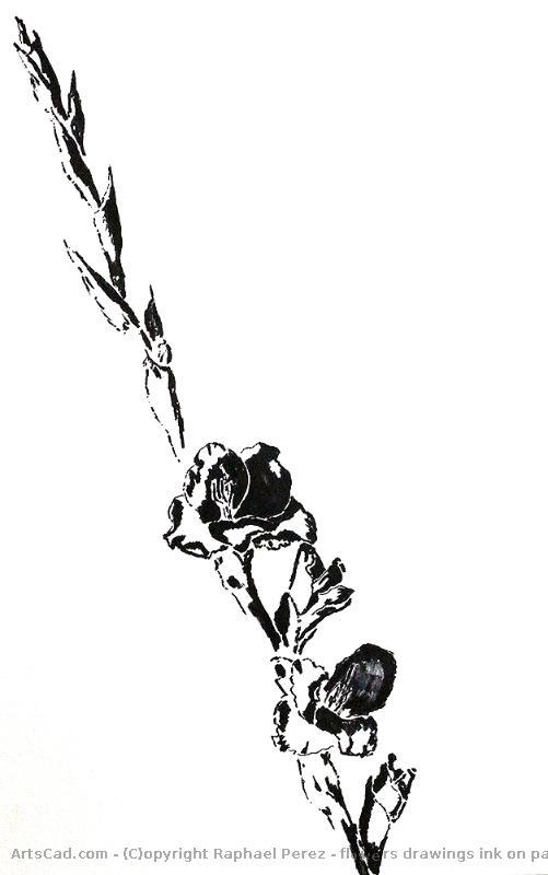 Obra De Arte Raphael Perez Flores Desenhos Tinta Sobre